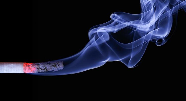 Rauch, Zigarette